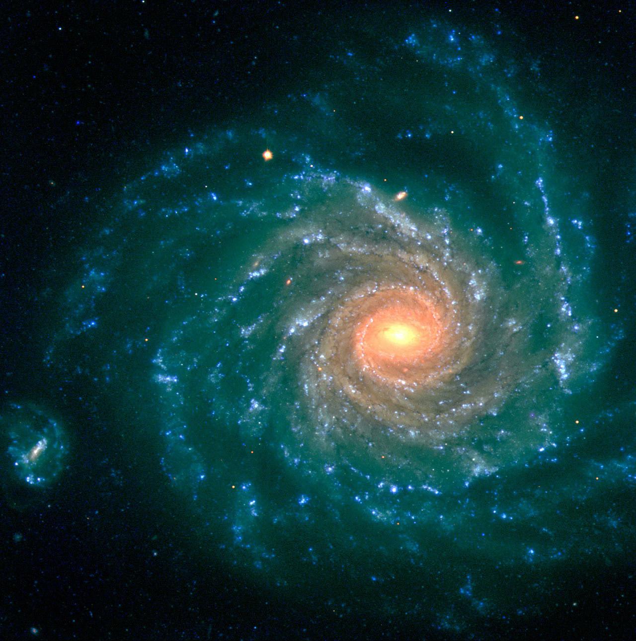 Risultati immagini per forza armonia spirale